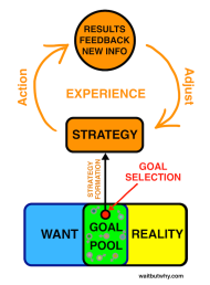 Software-Strategy-Loop